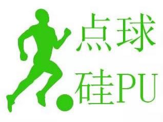 广州点球体育科技有限公司
